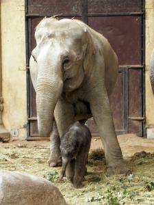 Juli 2009: Mit Mutter Thura