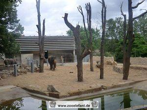 Vor dem Elefantenhaus