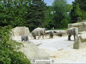 Elefantenpark Köln